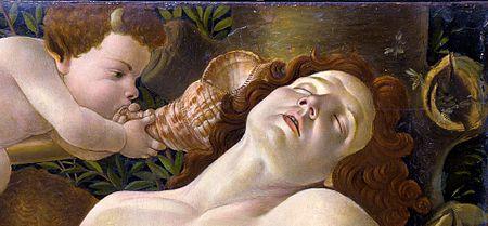 """""""De rerum natura"""" în lectura unui diletant (cu câteva cuvinte despre traducereafilosofică)"""